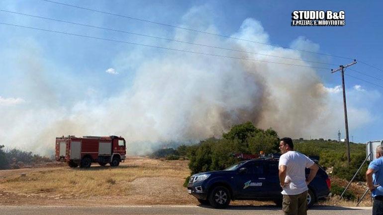 Φωτιά σε δασική έκταση στο Αραχναίο στο Ναύπλιο